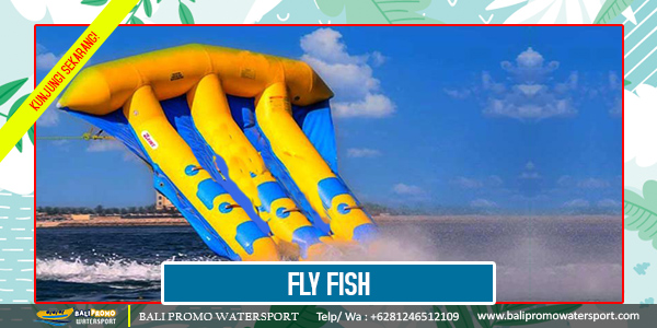 Fly Fish - Bali Promo Watersport - Copy