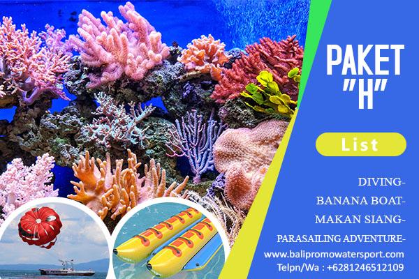 Paket H Watersport di Bali